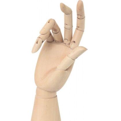 Modelhand